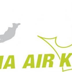 Vienna Air King 2010